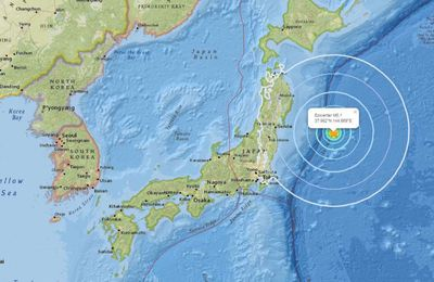 Japon : un séisme d'une magnitude de 6,1 frappe la côte est