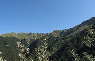 Vagabonde dans les Appennins Tosco-Emiliano, entre bleu du ciel et bleu de la Méditerranée