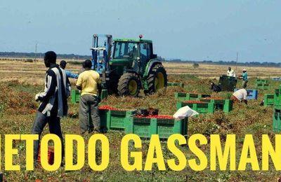 Tecnologia agricole
