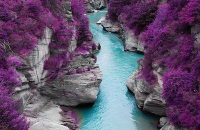 La beauté est partout dans la nature (44 Photos)
