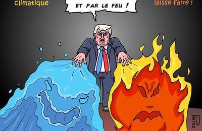 SOS la planète en danger. Trump réveille toi !