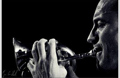 Sélection de festivals de Jazz pour l'été 2017