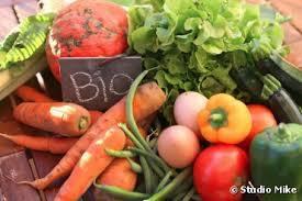 L'irrésistible expansion de l'agriculture biologique