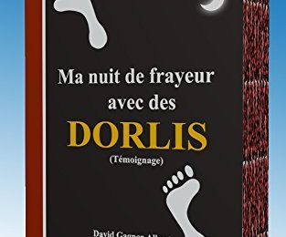 🎃 Les Dorlis : comment une nuit paisible s'est-elle transformée en nuit de frayeur à cause des dorlis. Témoignage personnel.