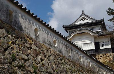 Le château Matsuyama