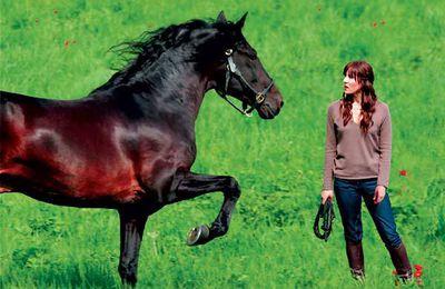 Mi Top 3 de películas de caballos