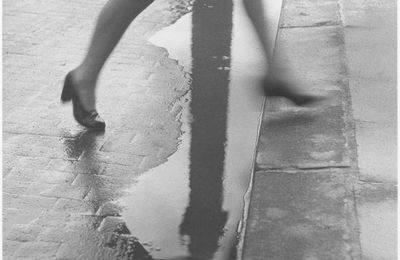 WILLY RONIS PHOTOGRAPHE