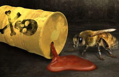 Epandages d'insecticides neurotoxiques : Les magouilles de Syngenta pour échapper à la justice