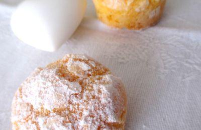 PAN DI MEI ossia Biscottini alla farina di mais...