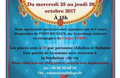 Deux après-midi de cirque au Centre hospitalier Michel-Poisat.