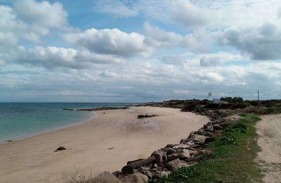 Barfleur , la côte