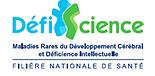 Vidéos - Journée sur la rééducation neurocognitive chez l'enfant Lyon 2016