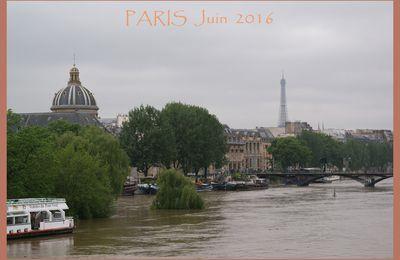 Paris sous les eaux. 2016