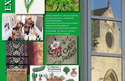 Balade botanique à Gigny (Jura).