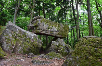 Dans la forêt mystique du Schauenberg