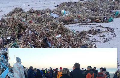 Nettoyage de plage en urgence...