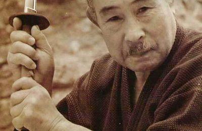 Nihon Taï Jitsu, quand le génie japonais rencontre l'esprit français