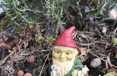 Avis à la population : on a enlevé mon chenin de jardin, Jérémie Mourat promet une belle récompense à qui le dénichera !
