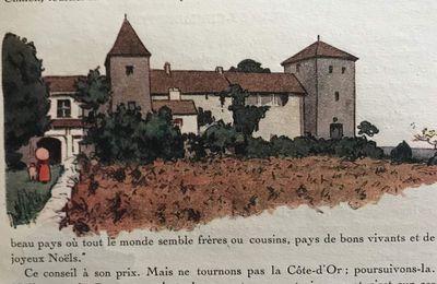 Le feuilleton de l'été : l'histoire œnologique de la côte bourguignonne (5) les rythmes particuliers de l'œnologie historique