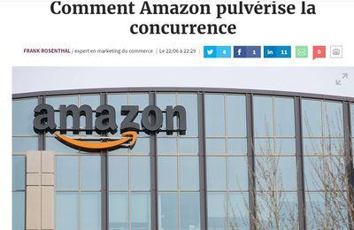 Comment Amazon pulvérise la concurrence : ma tribune dans Les Echos :