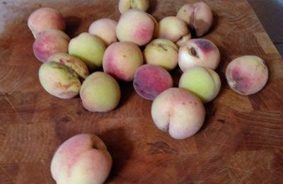 """Confiture d'abricots """"bio"""" des Joncherettes"""