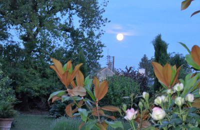 La lune en juin.