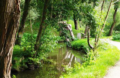 La Haute Vallée de la Bièvre au départ de Saint-Quentin-en-Yvelines