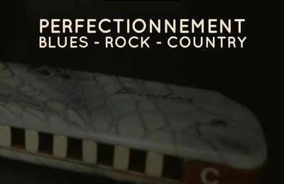 Stage d'harmonica - Perfectionnement Blues - Rock - Country