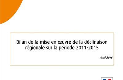 Déclinaison régionale du PNA Odonates : le bilan