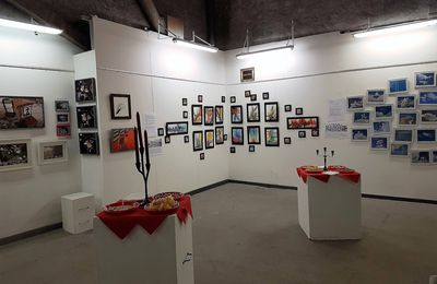 "VERNISSAGE ""CABINET DE CURIOSITES"" ! AVRIL 2017"