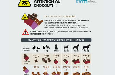Pâques ! Attention aux chocolats !