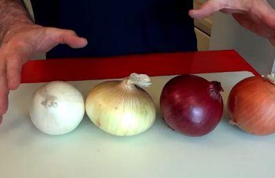La plupart des gens ne savent pas ce que vous êtes censé faire à chaque type d'oignon. Le faites vous?