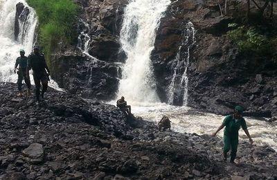 3 parcs camerounais dans la liste d'attente du patrimoine mondial de l'Unesco