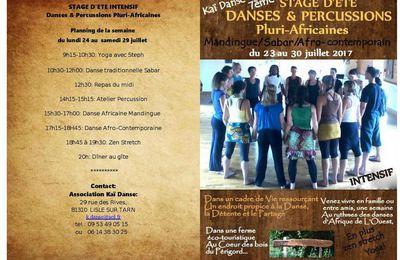 STAGE D'ETE INTENSIF DANSES ET PERCUSSIONS PLURI-AFRICAINES du 23 au 30 juillet 2017