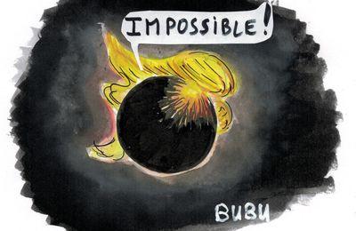 Eclipse solaire visible aujourd'hui aux Etats-Unis... Trump pas d'accord !