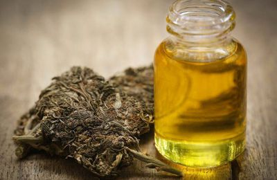 The Many Different Uses for the CBD Oils