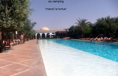 """MARRAKECH surnommée """"la perle du sud"""":nous irons au camping """"Manzil la tortue""""avec sa piscine à débordement de 40 M de long ,son jaccuzi,ses transats et lits ,son jardin de cactus son mini golf"""