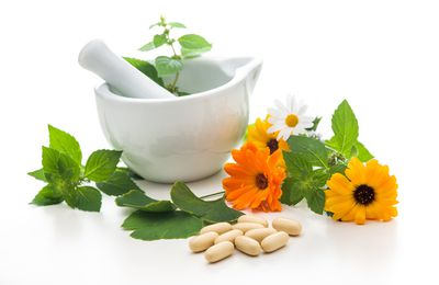 Analgesic plants, to relieve pain naturally