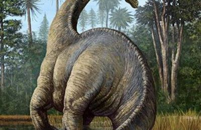 The first dinosaurs were Scottish