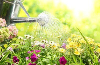 Vous êtes jardinage traditionnel ou trendy ?