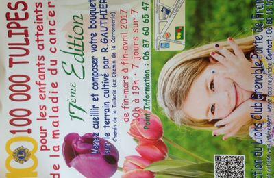 100 000 tulipes, 2017, Chemin de la Tuilerie (ex Chemin de la Carronnerie) MEYLAN