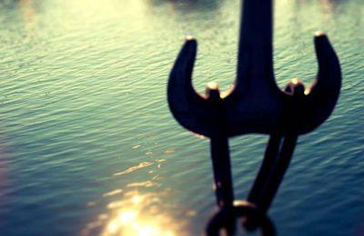 #37 Les bords du lac