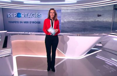 Anne-Claire Coudray JT 13H TF1 le 21.01.2017