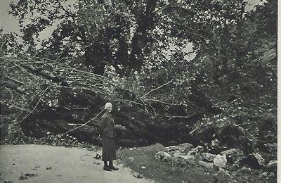 Les Convers-Hameau - Route barrée par les arbres - Cyclone du 23 août 1934
