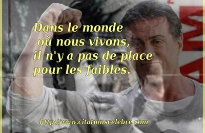 Citation de Sylvester Stallone