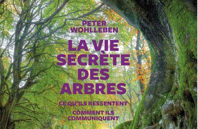 [Livre] La vie secrète des arbes de Peter Wohlleben