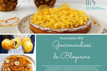 GOURMANDISES DE BLOGUEURS - ASSOCIATION IRIS