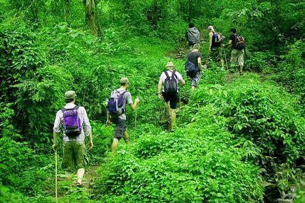 Jungle Trekking in Uttarakhand