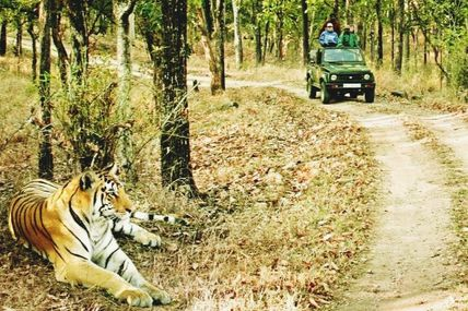 Rajaji National Park in Uttarakhand