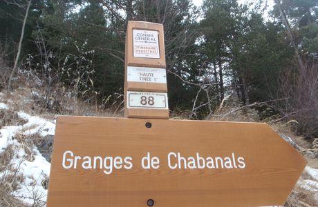 Chabanals, Vallon de Demandols, 1600m.